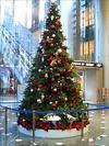 六本木のクリスマスツリー