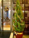 LIVING/CAFE入り口のクリスマスツリーとリース