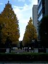 Gの母校A大学