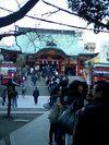 初詣で客で長蛇の列の花園神社